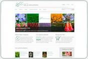Catalogos de plantas en Sala Graupera