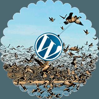 migrar-wordpress-facilmente